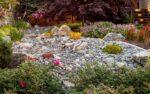 A desert-inspired rock garden