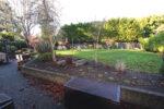 Before: a backyard garden before landscaping